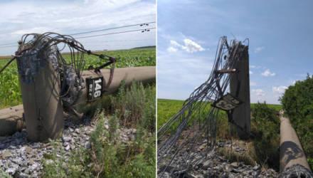 Переломил бетонные столбы: ветер в Гомельской области повредил шесть опор линий электропередачи