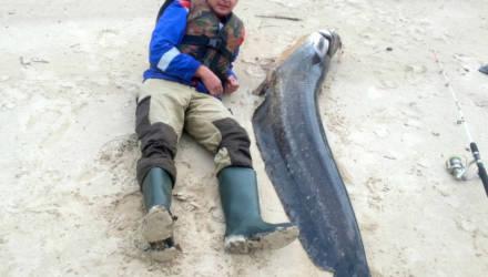 «Полчаса меня тягал по реке». Мозырянин вытащил из Припяти сома длиной 210 сантиметров