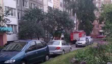 В Гомеле произошла утечка газа в одной из квартир. Пока газовщики ждали хозяйку, погибли две кошки