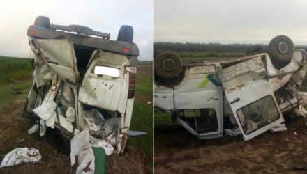 Страшно. ГАИ показала на фото последствия смертельного ДТП в Житковичском районе