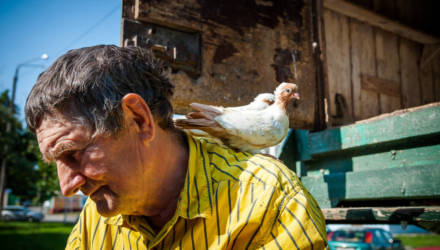 «Улетит, день нет, два. Я не сплю, переживаю». Гомельчанин 40 лет разводит голубей в центре города