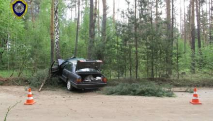 В Светлогорске женщина решила подвезти попутчика и врезалась в дерево: пассажир умер, а супруг решил взять вину на себя