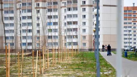 В Гомеле и области восстановят пострадавшие от засухи скверы и аллеи