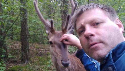Видеофакт. Дикий оленёнок два часа «собирал грибы» вместе с парнями из Жлобина