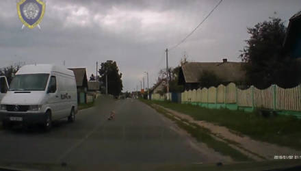 3-летнюю девочку сбила машина в Речице (видео)