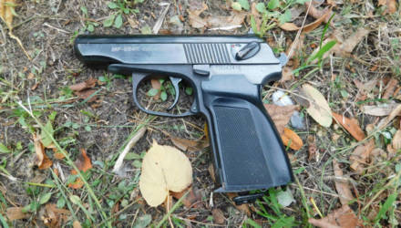 Нетрезвый безработный гомельчанин, ранее судимый за пьяное вождение, угрожал молодым людям пистолетом