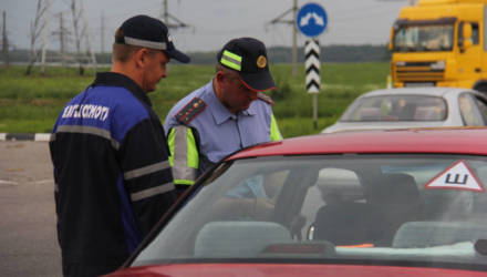 """Стали известны первые результаты """"охоты"""" ГАИ на авто без техосмотра: на Гомельщине за сутки выявлено 187 транспортных средств"""