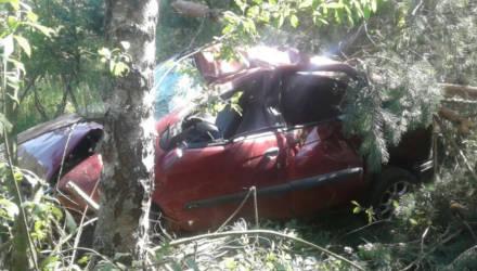 На Гомельщине водитель Renault неудачно совершил обгон, наехал на дерево и погиб