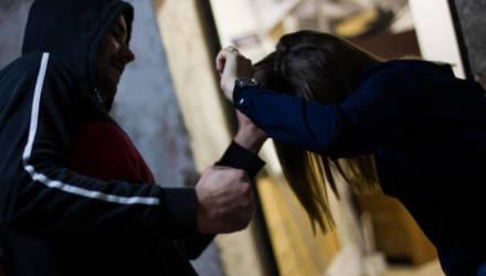 В Гомеле вынесли приговор по делу о злостном хулиганстве, разбое и изнасиловании