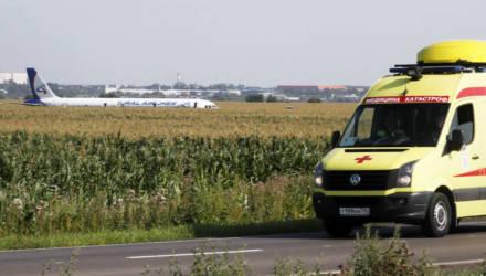 Чудо в Подмосковье. На взлёте в двигатели самолёта попали птицы, пилоты посадили лайнер в кукурузное поле, все выжили