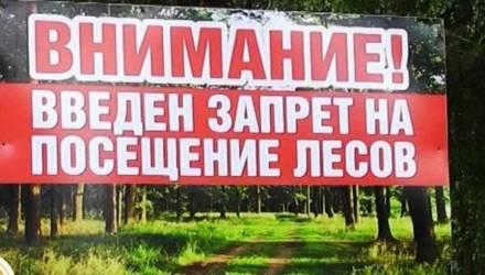 Жара! В пяти районах Гомельской области запрещено посещать леса