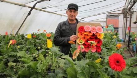 Семья предпринимателей из Гомельского района уже 20 лет выращивает экзотические цветы