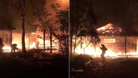 Под Киевом сожгли дом экс-главы Нацбанка Украины
