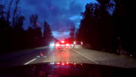 """""""Водитель Toyota в капюшоне убежал в лес"""". На трассе Гомель-Чернигов столкнулись маршрутка и две легковушки"""