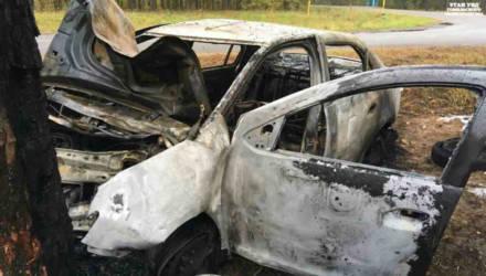 Под Гомелем пьяный водитель не справился с управлением, наехал на дерево и вместе с пассажиром оказались в реанимации. Авто сгорело целиком