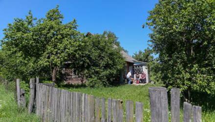 Под Гомелем сосед переставил забор – и началось...
