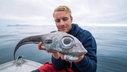 """Рыбак не мог поверить своим глазам, когда выловил """"пришельца"""" с глубины 800 м"""