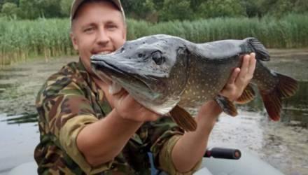 «Если ещё раз словлю такую рыбину, то обязательно её отпущу». Рыбак раскрывает секреты хорошего улова