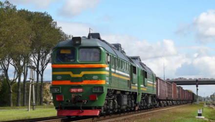 В Жлобинском районе грузовой состав насмерть сбил 18-летнего парня