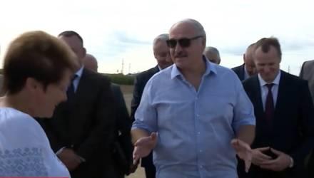 Александр Лукашенко хочет купить корову: «Я за свои. Деньги у меня есть»