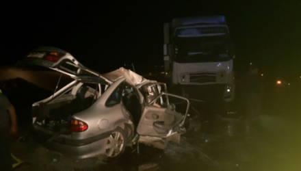 Четыре белоруса погибли в Калмыкии. Из-за коровы Renault влетел во встречную фуру