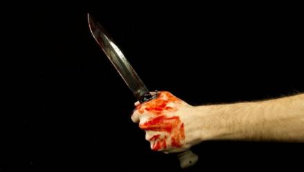 Студент-иностранец, ударивший ножом квартирную хозяйку на Новополесской в Гомеле, был игроманом