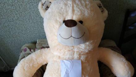 Важно. Оперативники Жлобина нашли подозреваемого в краже плюшевых медведей