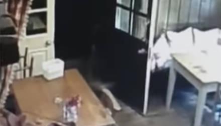 Камера сняла, как за спиной официантки внезапно возник силуэт маленькой девочки