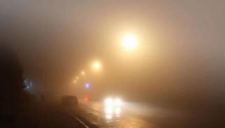 ГАИ предупреждает водителей и пешеходов: Гомельщину накроет плотным туманом