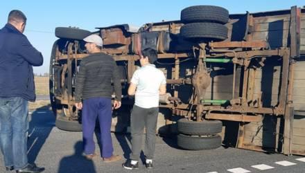 «Картошкой был набит под самый потолок»: на гомельской трассе опрокинулся грузовичок