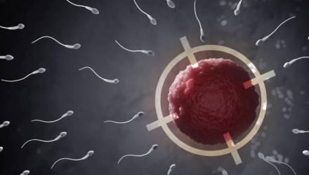 Учёные раскрыли главную тайну женского оргазма