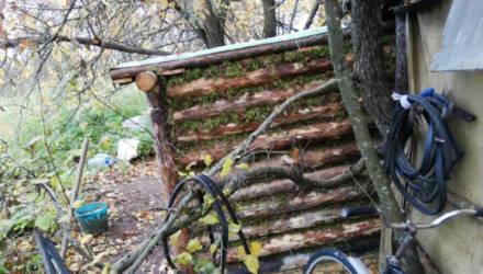 Белорус стал отшельником и жил в лесу на Гомельщине, чтобы не попасть в тюрьму