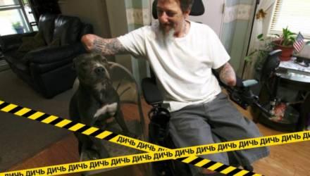 Хозяин остался без рук и ног из-за того, что его лизнул собственный пёс