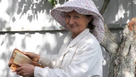 На пасеке Раисы Торбенко правильные пчёлы делают правильный мёд