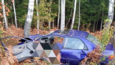 ДТП в Чечерском районе: пассажир в больнице, водитель погибла