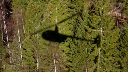 В Наровлянском районе с помощью вертолёта нашли пенсионера, который пошёл в лес за грибами и заблудился