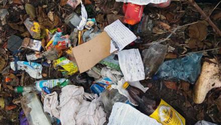 В Рогачёвском районе обнаружили свалку, работники сельсовета перевернули горы мусора и нашли её хозяина