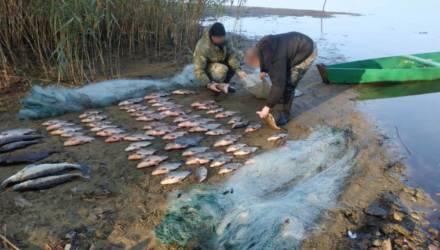 Рейды на рыбаков-браконьеров теперь будут проходить без предупреждения