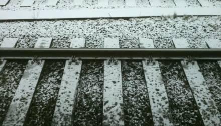 Споткнулся и упал: мужчина погиб под поездом в Жлобине