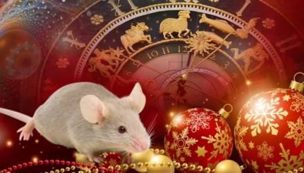 2020 год Белой Крысы: что ждёт и к чему готовиться всем знакам зодиака