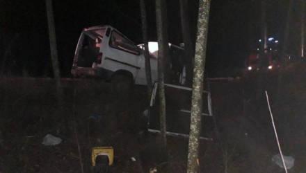 В Гомельской области пьяный бесправник наехал на дерево и перевернулся. Его 10-летнюю дочь из покорёженного кузова доставили спасатели