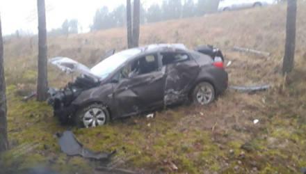 Гомельчанин на Hyundai не справился с управлением и врезался в дерево: пострадали две женщины