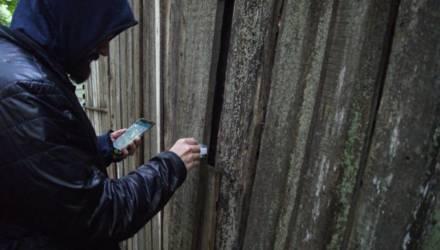 «Мобильные» кредиты и наркоторговля. В Гомеле завершено расследование уголовного дела