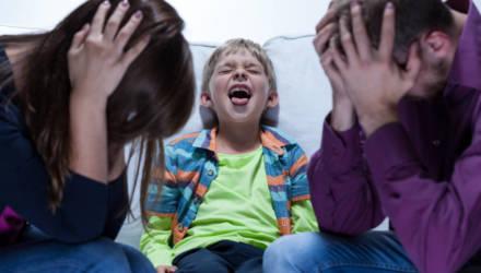 «Что на обед давали? Да всякое…» На Гомельщине 10-летний мальчик возмутил граждан на остановке отборной нецензурщиной