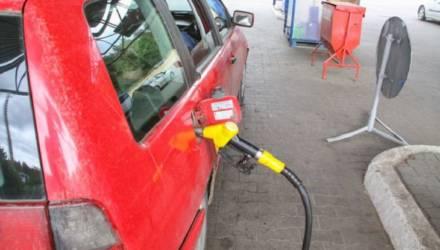 В Беларуси грядёт рост цен на бензин: названа причина