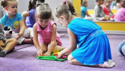 Детсады, бассейны и молодёжный городок - развитие социальной инфраструктуры обсудили в Гомеле