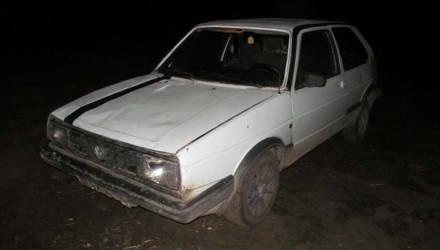 На Гомельщине лось попал под колёса авто. Животное добили ножом и перевезли