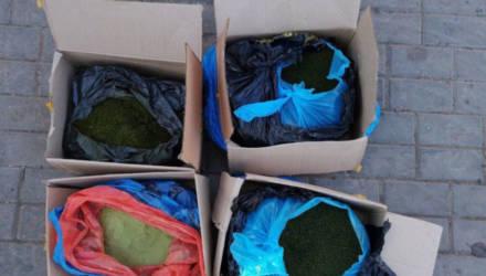 В Гомеле оперативники наркоконтроля изъяли из незаконного оборота крупную партию насвая