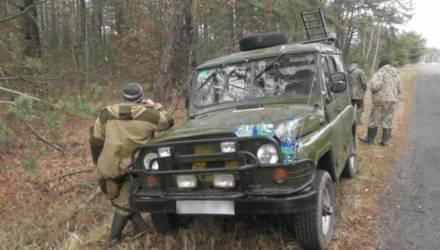 Под Светлогорском охотники уверяли задержавших их инспекторов, что нашли в лесу 150 кг мяса