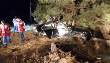 Ночью под Светлогорском BMW вылетел в кювет, водителя зажало в салоне